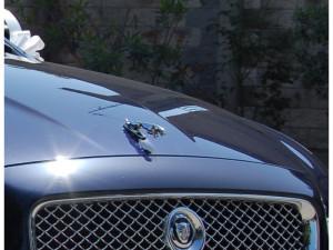 Auto Sposi Napoli - Jaguar XF, una perfetta auto per cerimonie e matrimoni